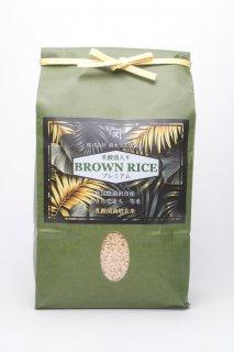 【お米ソムリエ監修】乳酸菌入りあきたこまち BROWN RICE (玄米)