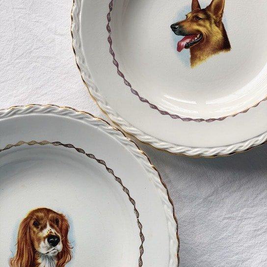 Vintage plate.Shepherd