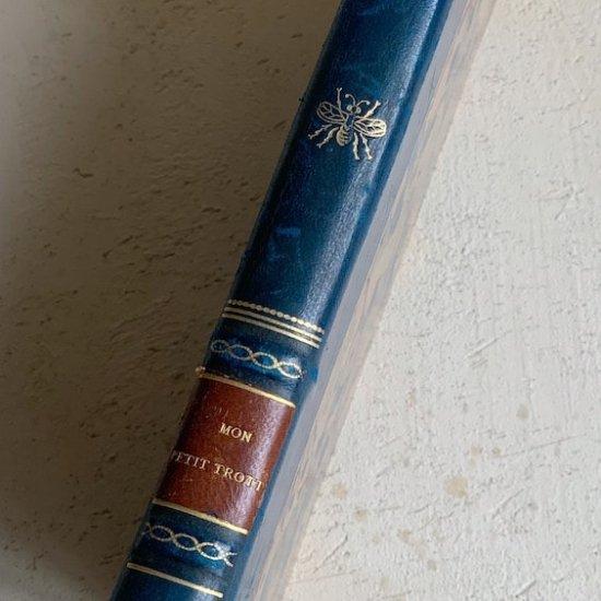 France antique book.a