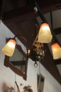 クリサンセマムのつぼみ アールヌーヴォー 3灯シャンデリア