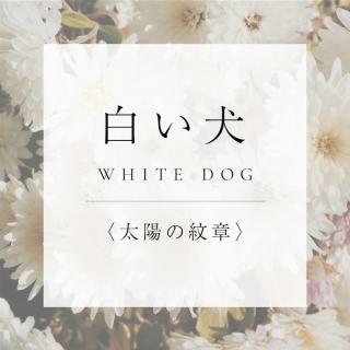 マヤンエッセンス 白い犬