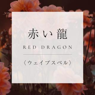 マヤンエッセンス 赤い龍 WS