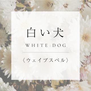 マヤンエッセンス 白い犬 WS