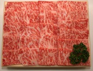 宮崎牛サーロイン焼肉用500g(250g×2)