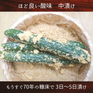 胡瓜の糠漬け(中)一本