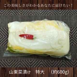 山東菜(特大)