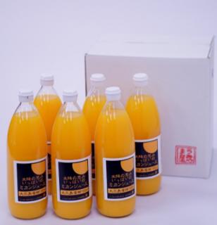 太陽の恵みいっぱいのみかんジュース6本セット