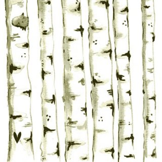 ペーパーナプキン(33)ppd:(5枚)Nordic Birch Trees-PP128