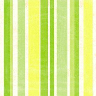 ペーパーナプキン(33)ppd:(5枚)Stripes lime-PP277