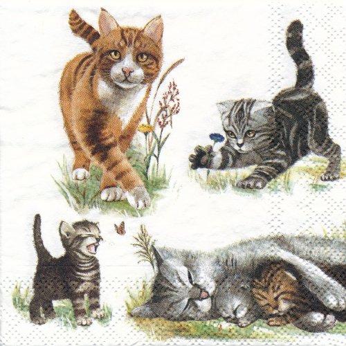 ペーパーナプキン(25)AMB:(5枚)Cats Family-AM37(25)