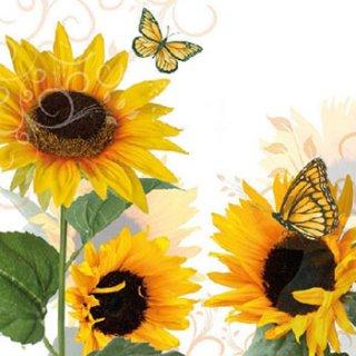 ペーパーナプキン(25)AMB:(5枚)Sunny Butterfly-AM58(25)