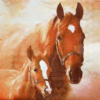 ペーパーナプキン(33)AMB:(5枚)HORSE WITH FOAL-AM8
