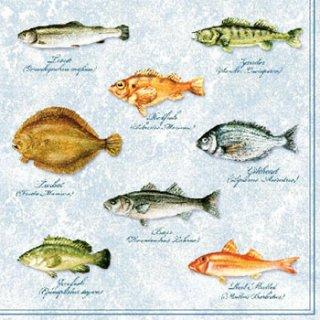 ペーパーナプキン(33)AMB:(5枚)FISHES-AM117