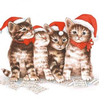ペーパーナプキン(33)AMB:(5枚)SINGING CATS-AM229