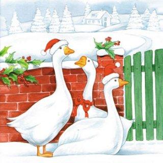 ペーパーナプキン(33)AMB:(5枚)Christmas Geese-AM266