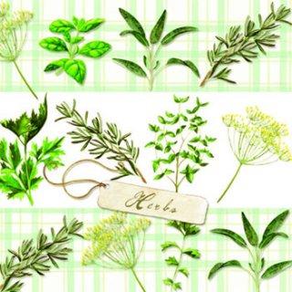 ペーパーナプキン(33)AMB:(5枚)Herbs-AM337