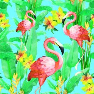ペーパーナプキン(33)AMB:(5枚)Flamingos-AM358