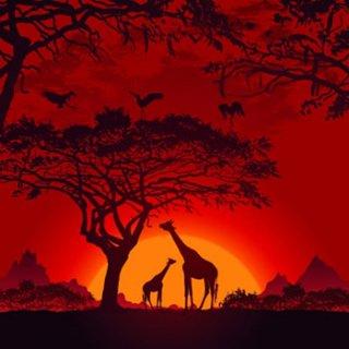 ペーパーナプキン(33)AMB:(5枚)Safari Sunset-AM371