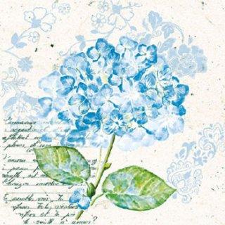 ペーパーナプキン(33)AMB:(5枚)紫陽花(ブルー) -AM516