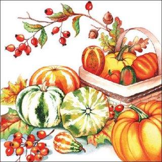 ペーパーナプキン(33)AMB:(5枚)Pumpkin & Rosehips -AM536