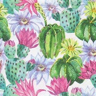 ペーパーナプキン(33)Daisy:(5枚)Watercolour Exotic Flowers-DA111