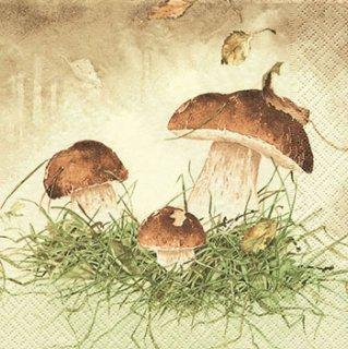 ペーパーナプキン(33)home:(5枚)Three Mushroomsfrom-HO174