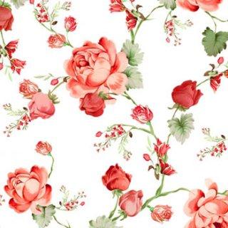 ペーパーナプキン(33)home:(5枚)Cottage Roses-HO212