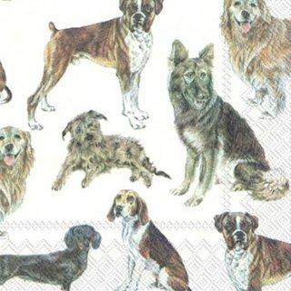 ペーパーナプキン(33)IHR:(5枚)MY PAVORITE DOG(犬)-IH133