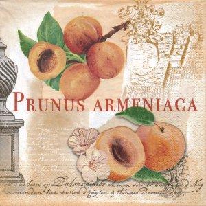 ペーパーナプキン(33)NOUVEAU:(5枚)PRUNUS ARMENIACA-NO15