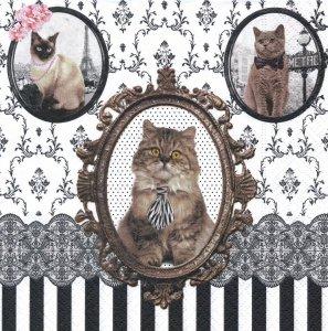 ペーパーナプキン(33)Nuova:(5枚)BAROCCO CATS 2014(猫)-NU23