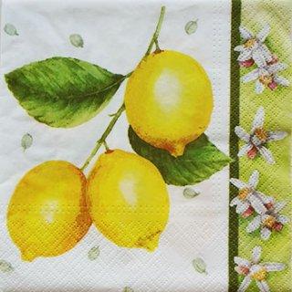 ペーパーナプキン(33)paw:(5枚)レモン-PW5