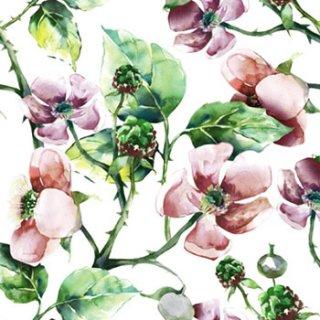 ペーパーナプキン(33)paw:(5枚)Pink Wild Roses-PW112