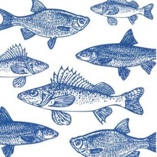ペーパーナプキン(33)ppd:(5枚)Graphic Fishes(ブルー)-PP36