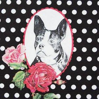 ペーパーナプキン(33)ppd:(5枚)Bulldog Parisien(犬)-PP42