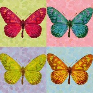 ペーパーナプキン(33)ppd:(5枚)Pop Art Papillon-PP63