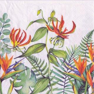 ペーパーナプキン(33)AMB:(5枚)Tropical Flowers White-AM557