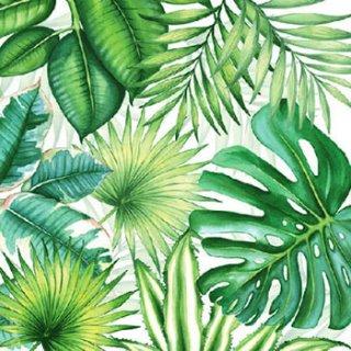 ペーパーナプキン(33)AMB:(5枚)Tropical Leaves -AM509