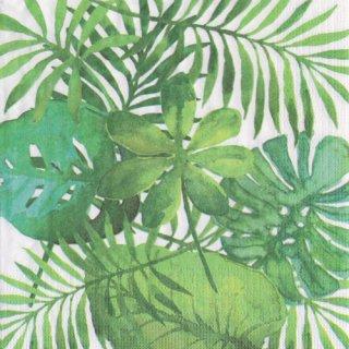 ペーパーナプキン(33)ppd:(5枚)Feuilles Tropicales-PP308
