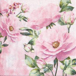 ペーパーナプキン(33)paper:(5枚)Rose garden-PA286
