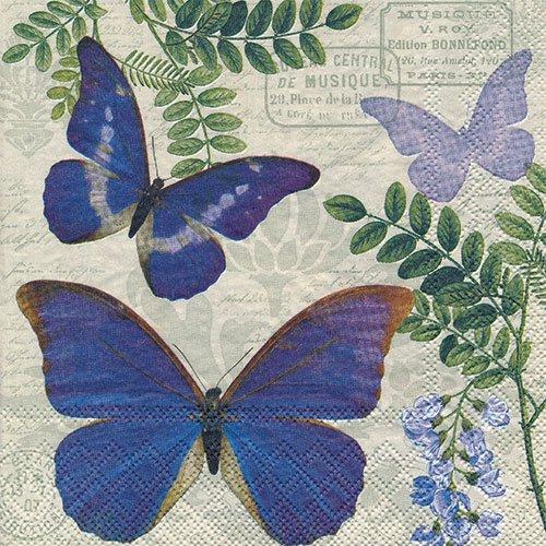 ペーパーナプキン(33)AMB:(5枚)BLUE MORPHO-AM597