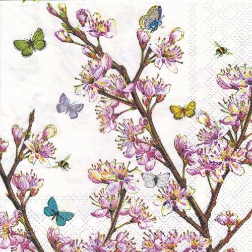 ペーパーナプキン(33)AMB:(5枚)Blossom Cream-AM372