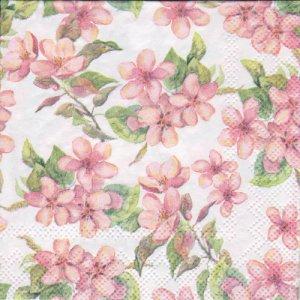 ペーパーナプキン(25)AMB:(5枚)Cherry Blossom rose-AM62(25)