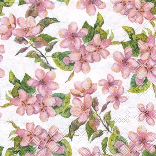 ペーパーナプキン(33)AMB:(5枚)Cherry Blossom rose-AM611