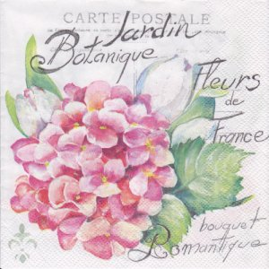 ペーパーナプキン(33)IHR:(5枚)JARDIN BOTANIQUE light rose-IH395