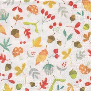 ペーパーナプキン(33)IHR:(5枚)秋の木の実MEDLEY-IH403