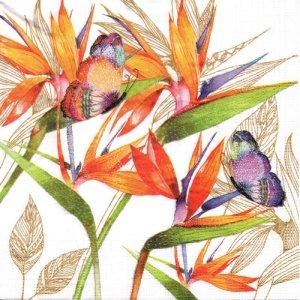 ペーパーナプキン(33)ppd:(5枚)Parrot Flower-PP339