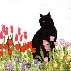 ペーパーナプキン(33)ppd:(5枚)Black Cat Tulips-PP341