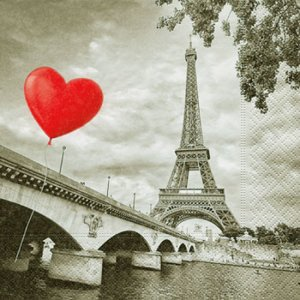 ペーパーナプキン(33)paper:(5枚)City of love-PA83
