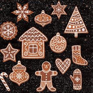 ペーパーナプキン(33)paper duni:(5枚)クリスマスクッキー-PA316