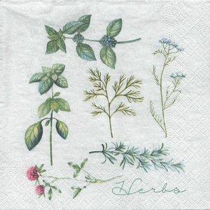 ペーパーナプキン(33)NOUVEAU:(5枚) Herbary-NO117